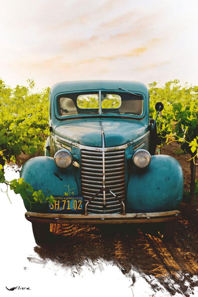 Illustration représentant une voiture ancienne dans un vignoble